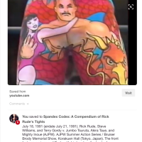 On the Spandex Codex, or Cataloging Ensues When Archivist Watches Wrestling